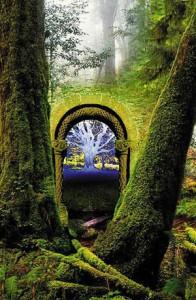 Possible types of portals