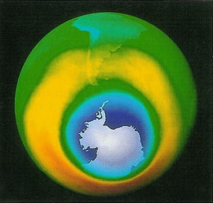 Ozone hole. And have they?